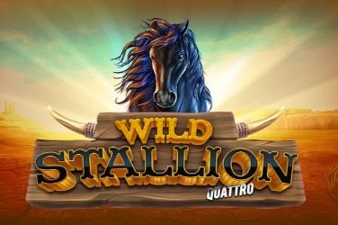 Wild stallion